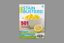 COV_Stainbusters_220